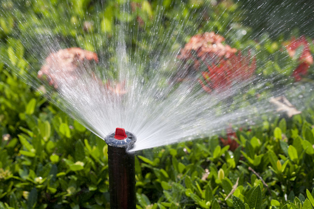 professional lawn sprinkler repairs in Birmingham