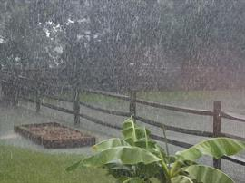 Heavy Rainfall