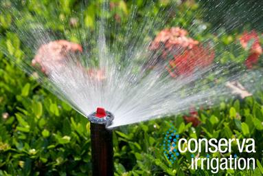 Close Up OF Sprinkler Head Spraying Water