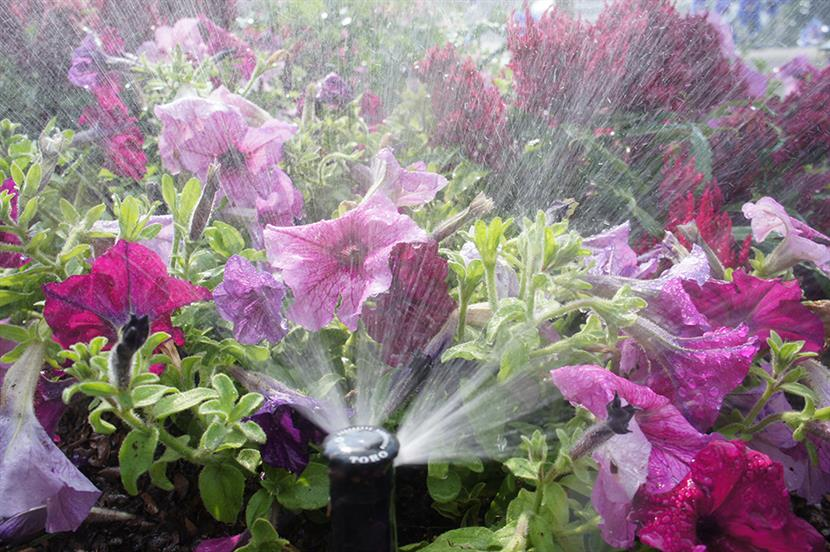 High-quality irrigation repairs in Frisco TX