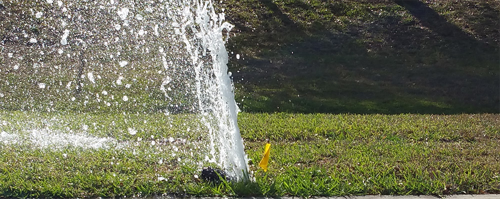 broken sprinkler head repair Sarasota Florida