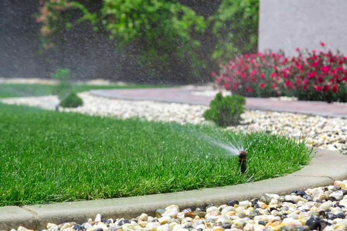 Sprinkler spray lawn with water