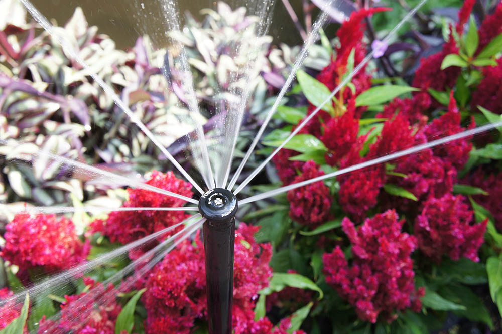 high-quality sprinkler repair in Wichita