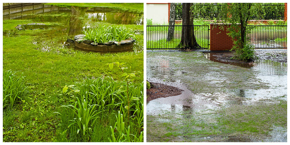 drainage solutions for yard Hampton Roads