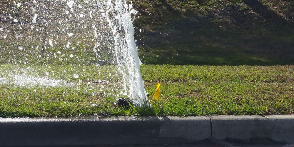 sprinkler head repair Sarasota FL
