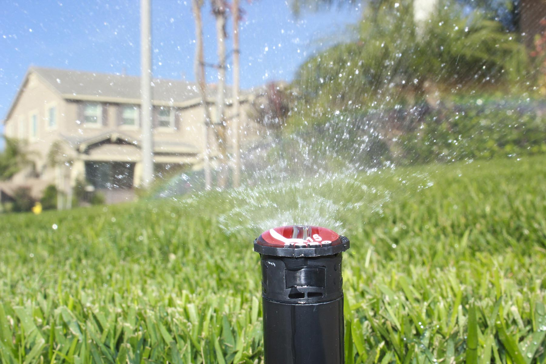 professional sprinkler repair wichita