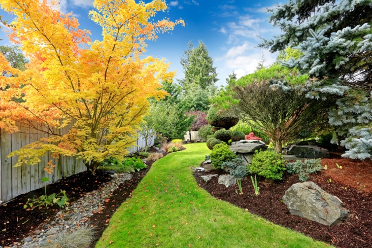 reasons to invest in your landscape chattanooga tn