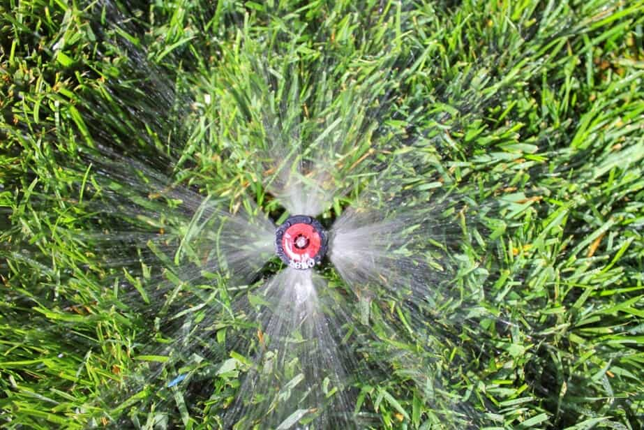 sprinkler head with water
