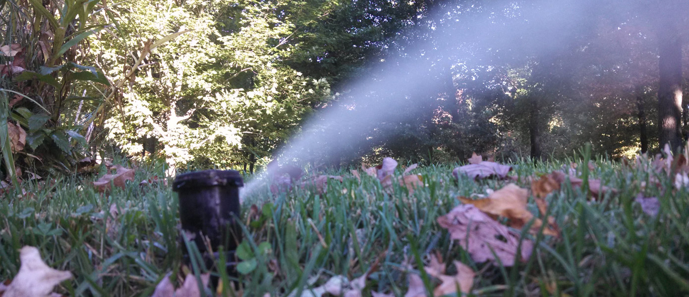 Sprinkler on lawn